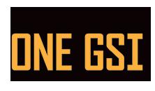 GSI Custom App Logo